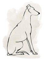 Greyhound Sketch I Fine Art Print