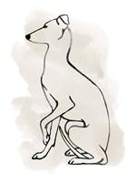Greyhound Sketch II Fine Art Print