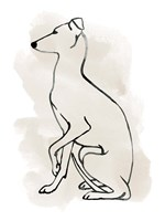 Greyhound Sketch II Fine Art Print