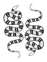 Epidaurus Snake II Fine Art Print