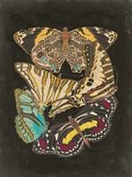 Winged Patterns I Fine Art Print
