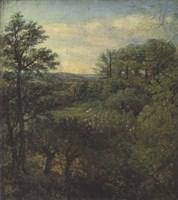 Valley Scene with Trees Fine Art Print