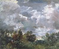 Study of Sky and Trees Fine Art Print