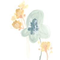Petite Petals I Fine Art Print