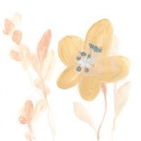 Petite Petals III Fine Art Print