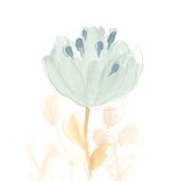 Petite Petals V Fine Art Print