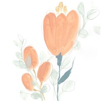 Petite Petals VII Fine Art Print