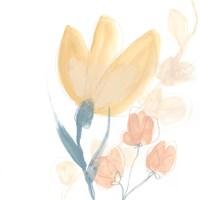 Petite Petals VIII Fine Art Print
