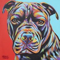 Canine Buddy III Fine Art Print