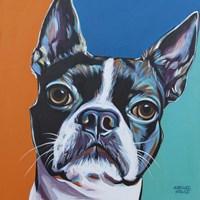 Dog Friend III Fine Art Print