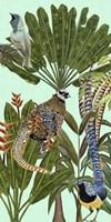 Birds Paradise III Fine Art Print