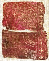 Glimmer Sari I Fine Art Print