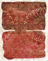 Glimmer Sari II Fine Art Print