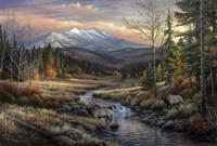 A Wanderers Dream Fine Art Print