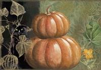 Pumpkin I Fine Art Print