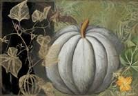 Pumpkin II Fine Art Print
