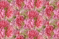 Pink Roses and Hydrangea Fine Art Print