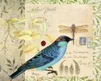 Post Card Birds I Fine Art Print