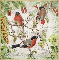 Winter Birds Bullfinches Fine Art Print