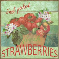 Farmers Market Strawberries Fine Art Print