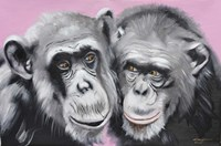 Loving Chimps Fine Art Print