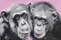 Loving Chimps Framed Print