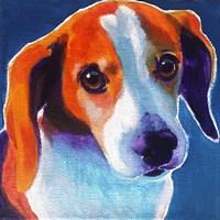 Beagle - Chase Fine Art Print