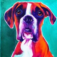 Boxer - Brahma Fine Art Print