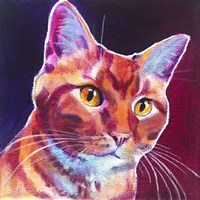 Cat - Linus Fine Art Print