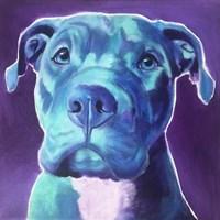 Pit Bull - Durango Fine Art Print