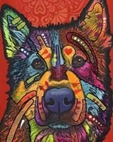 Pierre Fine Art Print