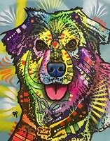 Shep Fine Art Print