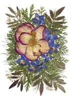 Flower Fantasy 9 Fine Art Print
