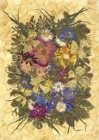 Flower Fantasy 14 Fine Art Print