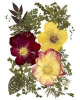 Flower Fantasy 15 Fine Art Print
