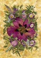 Dried Flowers 33 Fine Art Print