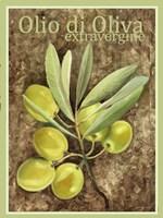 Olio Di Oliva Extravergine Fine Art Print