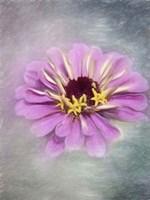 Pink Bloom 2 Fine Art Print