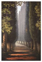 Through the Trees Fine Art Print