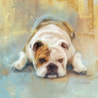 Bulldog With The Blues Fine Art Print