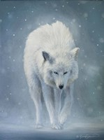 The White Wolf Fine Art Print