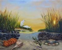 West Creek Fine Art Print