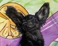 Happy Wienerdog Fine Art Print