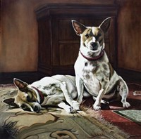 Sunny dogs 1 Fine Art Print
