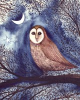 Midnight Owl Fine Art Print