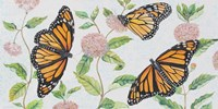 Monarch Majesty Fine Art Print