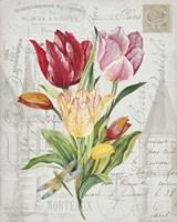 Bouquet Francais E Fine Art Print