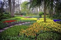 Colorful Corner Keukenhof Tulips Garden 4 Fine Art Print