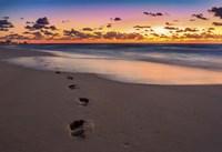 Footsteps At Sunrise Fine Art Print