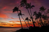 Maui Sunset Fine Art Print